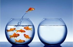 Mutuo surroga più liquidità